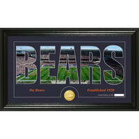 Chicago Bears Silhouette Bronze Coin Panoramic Photo Mint