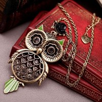 Antique Vintage Retro Adorable Cute Golden Hollow Rhinestone Jewelry Big Owl Long Necklace Pendant For Sweaters Hoodies:Amazon:Sports & Outdoors