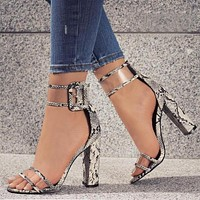 Super High Shoes Women Pumps Sexy Clear Transparent Strap Buckle Summer Sandals High Heels Shoes Women Party Shoes RV912509