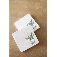 House Plant Marble Coaster Set