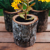 OUT OF STOCK Natural Wood Log Planter Pots