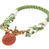 Apple Green Ombré Rope Dog Collar