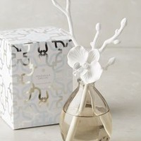 Butterfly Orchid Diffuser by Anthropologie in White Size: One Size Candles