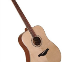Wood Song D-NA Dreadnought Solid Sitka Top Acoustic Guitar w/ Bag