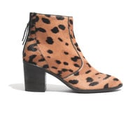 The Ames Boot in Leopard