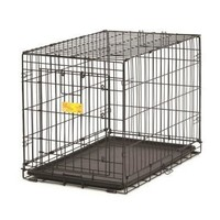 Life Stages Ace Dog Crate, 22-Inch