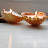 Eco-friendly Candle Scented Hand Made Candles Reusable Seahells