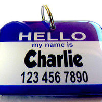 Modern Dog Tags Hello My Name Is Double Side 15 Color by ID4Pet
