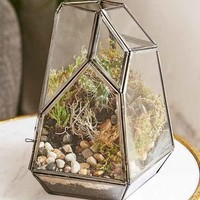 Magical Thinking Facteted Glass Terrarium