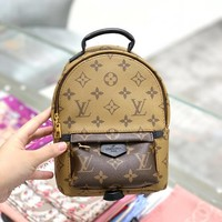 Louis Vuitton Lv Backpack #505