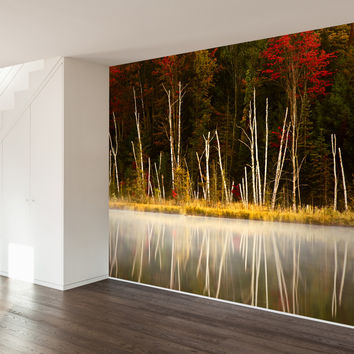 Paul Moore's Red Jack Lake Mural wall decal