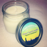 Spiced Cranberries - 8oz All Natural Soy Candle