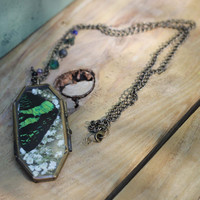 Butterfly Wing Glass Locket Necklace
