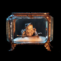 Antique Gilt  Casket Real FROG. Fairy Tale by mistyalbion on Etsy
