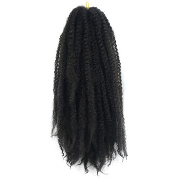 Caterpillar Wig Braid Fluffy Afro Hair Extension    2#