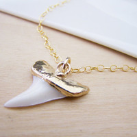 Real Shark Tooth Pendant 14k Gold Filled Long Necklace / Gift for Her