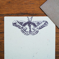 Moth Stationery set insect lepidoptera letter writing paper
