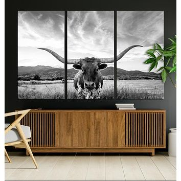 Big Horn of Cow Wall Art Canvas Print