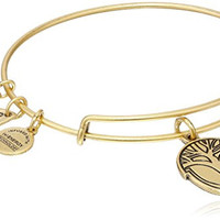 Alex and Ani Unexpected Miracles Rafaelian Gold Finish Bangle Bracelet