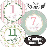 Shabby Chic Baby Monthly Stickers - Shower Gift or Scrapbook Photo Keepsake