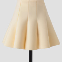 Afternoon Soiree Skirt