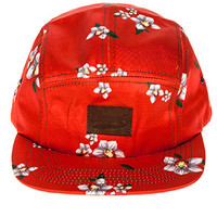 Orchid 5 Panel Hat