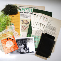 Vintage Altered Art Inspiration Kit - Green Collection- Collage Art - Mixed Media Projects  - Supplies  - Embellishments