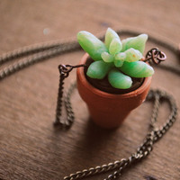 Planter Succulent Necklace by Run2theWild on Etsy
