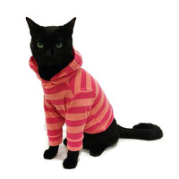 Coral and Raspberry Striped Cat Hoodie pet clothing cat clothing pet clothes Cat Shirt Cat Clothes cat sweater