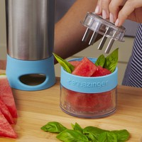 Aqua Zinger Fruit Infusion Water Bottle