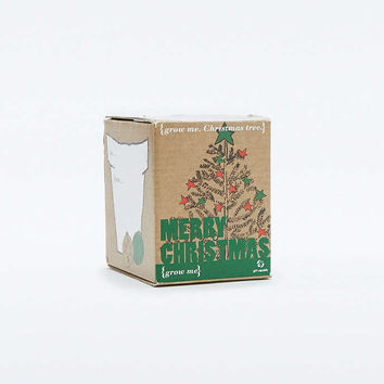 Grow Your Own Christmas Tree Kit - Urban Outfitters