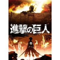 Attack On Titan 24x33 Anime ArtPrint Poster 009C/Middle Size