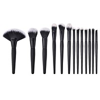 Pro 13pc Eye & Face Makeup Brush Set
