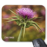 Winter Flowers In Tiberias, Israel Mousepad Mouse Pad