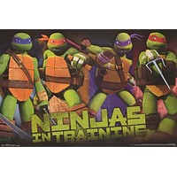 Teenage Mutant Ninja Turtles in Training Poster 22x34