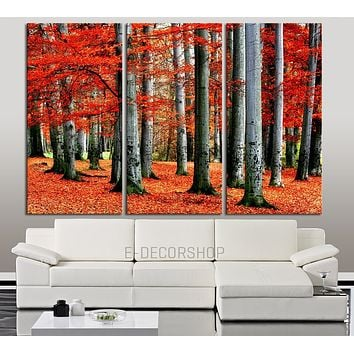 Large Wall Art Canvas Print Autumn in the Forest with Red Leaves on Ground Ready to Hang Red