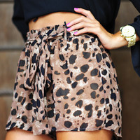 Spotted Leopard Shorts: Black/Brown   Hope's