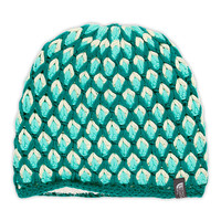 The North Face Women's Accessories Hats & Scarves BRIAR BEANIE