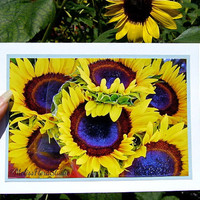 Bright Yellow Sunflowers Note Card - Sunny for Best Wishes, Birthdays
