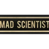 One Kings Lane - Decor & More - The Artwork Factory, Mad Scientist