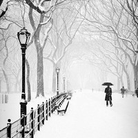 The Mall B&W Photo, Central Park, New York, City, Urban, NYC, Snow, Storm, Black, White, Winter