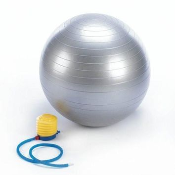Resilient Exercise Ball