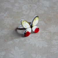 butterfly ring glasswing butterfly jewelry adjustable band statement ring