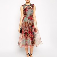 Little Mistress Printed Organza Skater Dress With Embellished Collar
