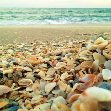 Beach and Seashell Photography Teal Ocean Waves by beachbumchix