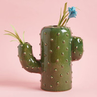Arid Arrangement Ceramic Vase