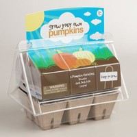 Grow Your Own Veggie Patch Kit