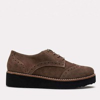 Tate Suede Loafer (Lodo)