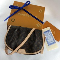 Louis Vuitton Bag #2997