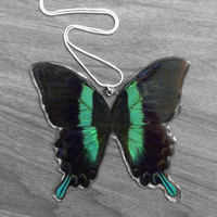 Real Peacock Swallowtail Necklace